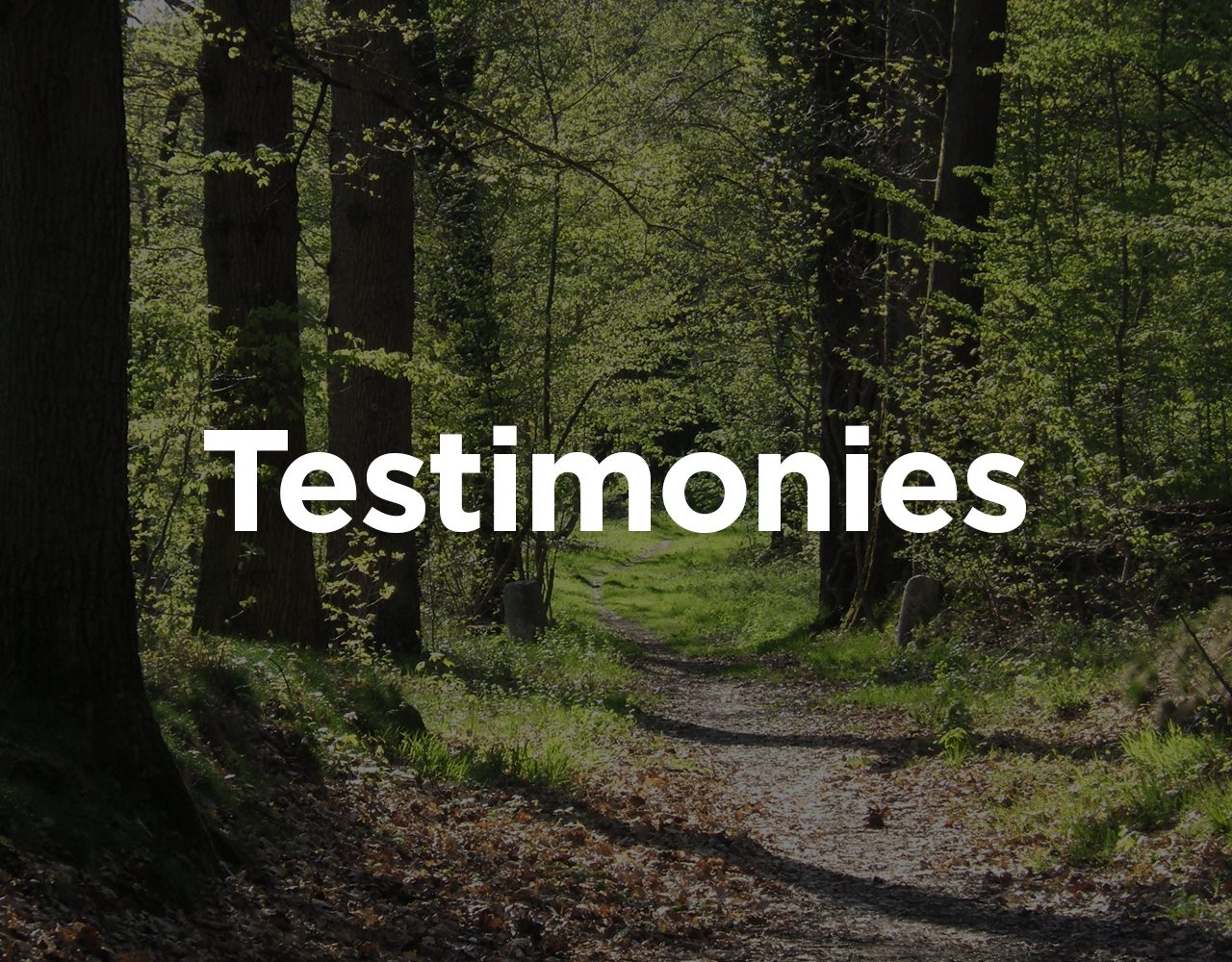 personal testimony How should your life shine forth as a living testimony what is the christian's call to separation and service discipleship lesson.